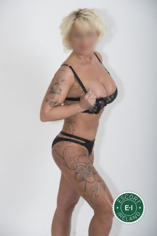 Book a meeting with Irishmaiden in Dublin 4 today