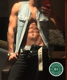 Meet the beautiful James  in Dublin 8  with just one phone call