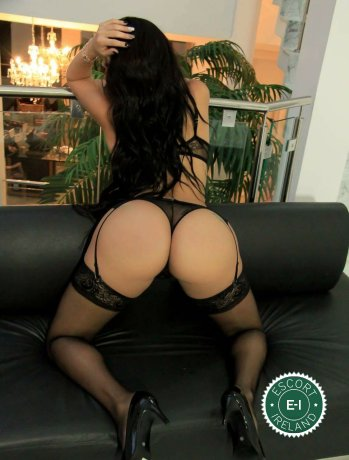 Book a meeting with TS Karol Mariani in Dublin 4 today