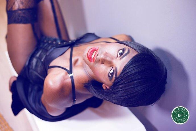 Black Panther Michelley TV is a high class Puerto Rican escort Dublin 1, Dublin