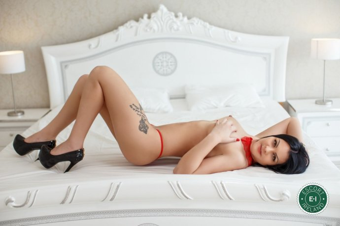 Erika is a very popular Czech escort in Galway City, Galway