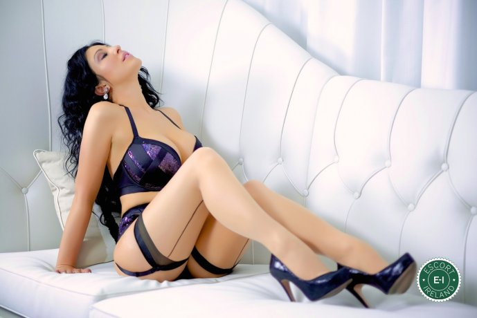 Book a meeting with Hot Emily in Belfast City Centre today