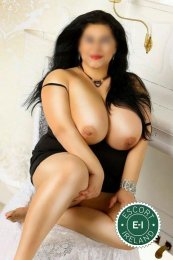 Book a meeting with BBW Charlotte in New Ross today