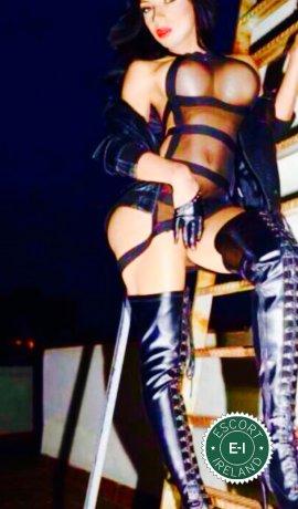 Shantal TS is a sexy Caribbean escort in Dublin 15, Dublin