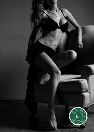 Katye is a sexy Maltese escort in Dublin 2, Dublin