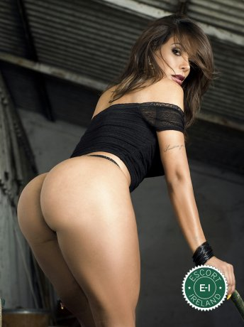 Carol TS is a very popular Brazilian escort in Dublin 3, Dublin