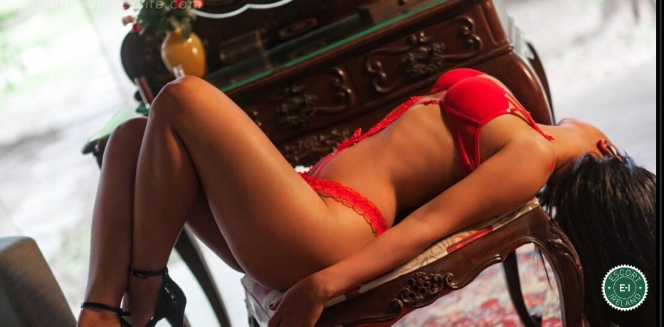 Meet the beautiful Paula in Limerick City  with just one phone call