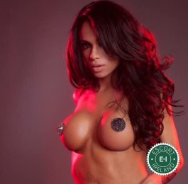Meet the beautiful TS Sara  in Dublin 1  with just one phone call