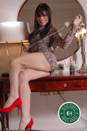 Book a meeting with TV Samantha  in Dublin 8 today