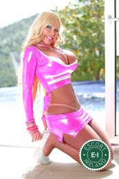 Book a meeting with TS Bionda in Dublin 1 today