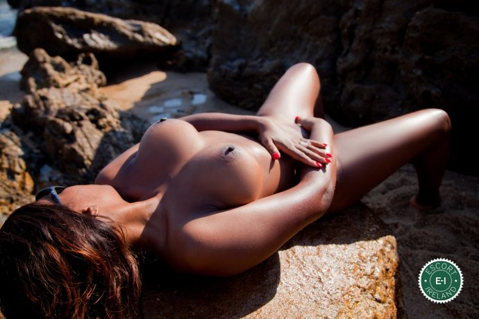 Wanda Williams is a super sexy Caribbean Escort in Limerick City