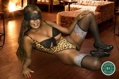 The massage providers in Tralee are superb, and Exotic Ebony Massage is near the top of that list. Be a devil and meet them today.