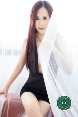 Lily is a sexy Chinese escort in Dublin 1, Dublin