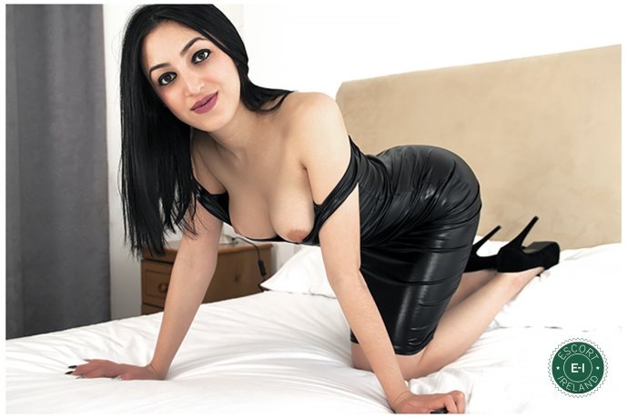 Emmy is a very popular Bulgarian escort in Dublin 18, Dublin