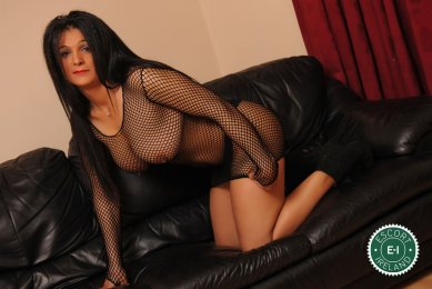 Meet the beautiful Sweet Bella in Longford Town  with just one phone call