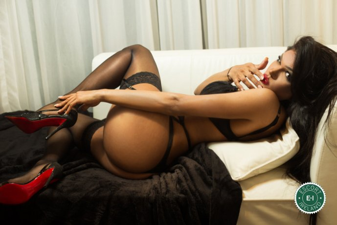 TV Lara Cristinny is a hot and horny Brazilian escort from Waterford City, Waterford