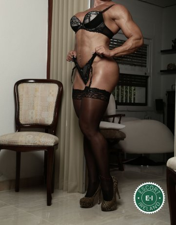Book a meeting with Rene in Dundalk today