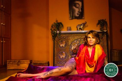 The massage providers in Galway City are superb, and Lakshmi is near the top of that list. Be a devil and meet them today.