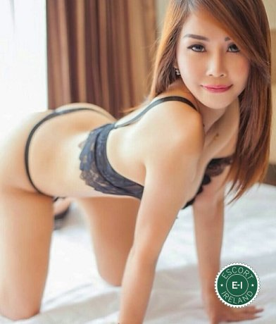 Celinar is a hot and horny Chinese escort from Galway City, Galway