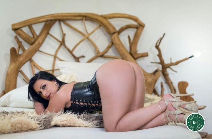 Book a meeting with Sexy Megan in Limerick City today
