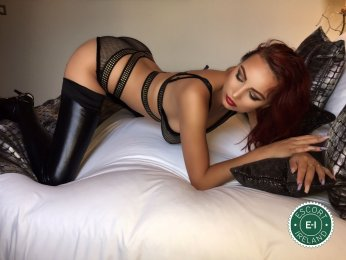 Spend some time with Kitty in Dublin 1; you won't regret it