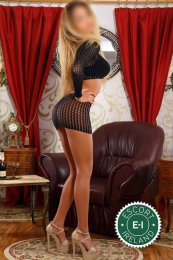 The massage providers in Dublin 4 are superb, and Isabel is near the top of that list. Be a devil and meet them today.