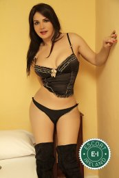 Spend some time with TS Naira in Galway City; you won't regret it