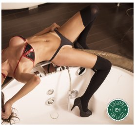 Book a meeting with TS Renatha Lopez in Dublin 2 today