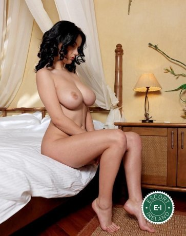 The massage providers in Dublin 7 are superb, and Katia is near the top of that list. Be a devil and meet them today.