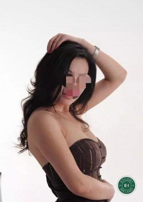 Sexy chinese escorts dublin Dublin - WikiSexGuide - International World Sex Guide