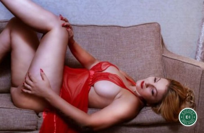 Spend some time with Camy in Navan; you won't regret it