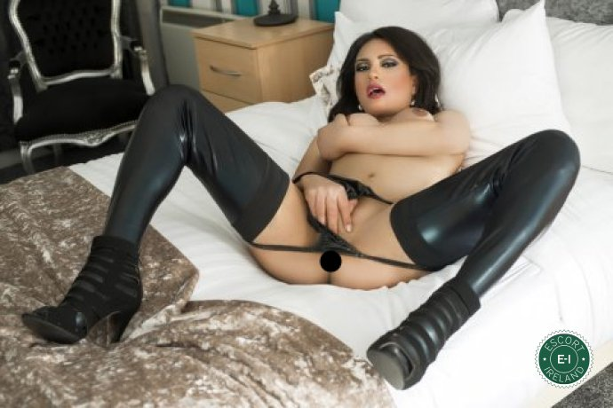 Meet TS Suzanna in Belfast City Centre right now!