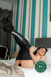 Spend some time with TS Suzanna in Belfast City Centre; you won't regret it