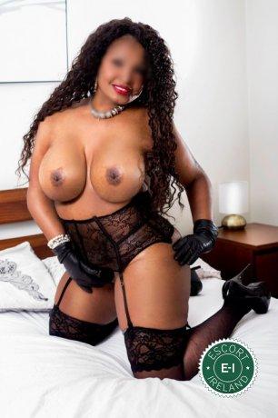 Ebony Katty is a sexy Caribbean escort in Dublin 9, Dublin