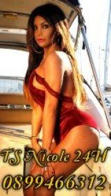 TS Nicole Noguera - escort in Kilmainham
