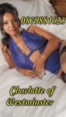 Book a meeting with Charlotte of Westminster in Santry today