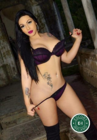 Spend some time with TS Dayana Araujo in Galway City; you won't regret it