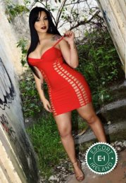 Meet TS Dayana Araujo in Galway City right now!