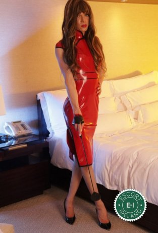 Meet Gorgeous TV Arielle in Dublin 18 right now!