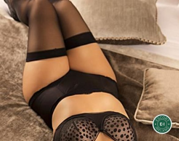 The massage providers in Dublin 4 are superb, and Angel Massage  is near the top of that list. Be a devil and meet them today.